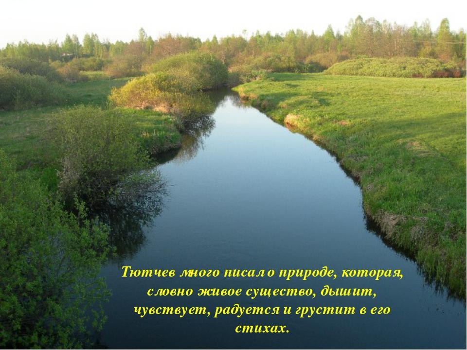 Тютчев много писал о природе, которая, словно живое существо, дышит, чувству...
