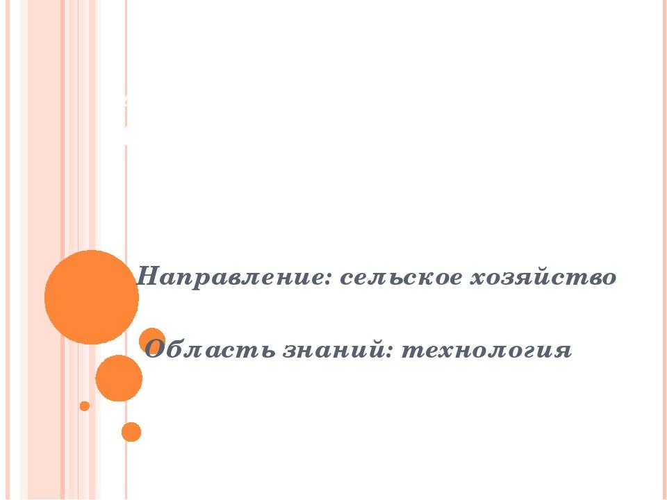 Автор  Салмагамбетова  Анара  8 «Б» класс   Направление: сельское хозя...