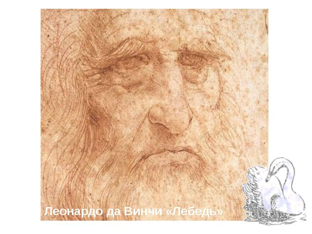 Леонардо да Винчи «Лебедь»