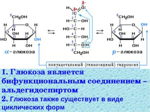 1. Глюкоза является бифункциональным соединением – альдегидоспиртом 2. Глюкоз