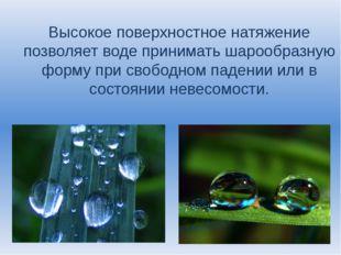 Высокое поверхностное натяжение позволяет воде принимать шарообразную форму п