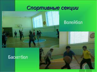 Спортивные секции Волейбол Баскетбол