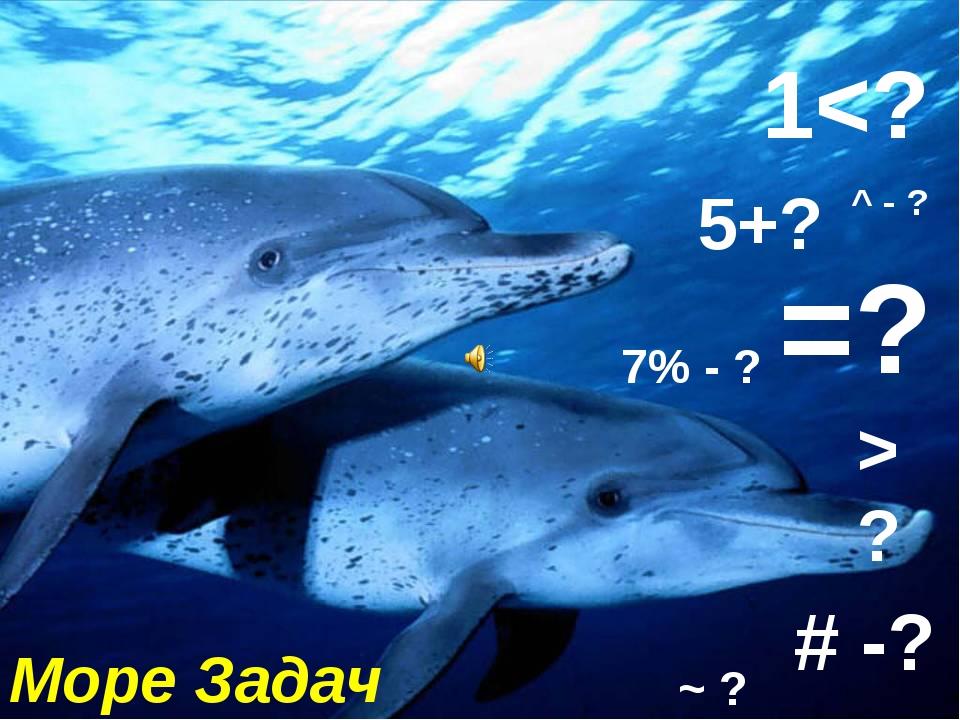 Море Задач 5+? # -? =? 1