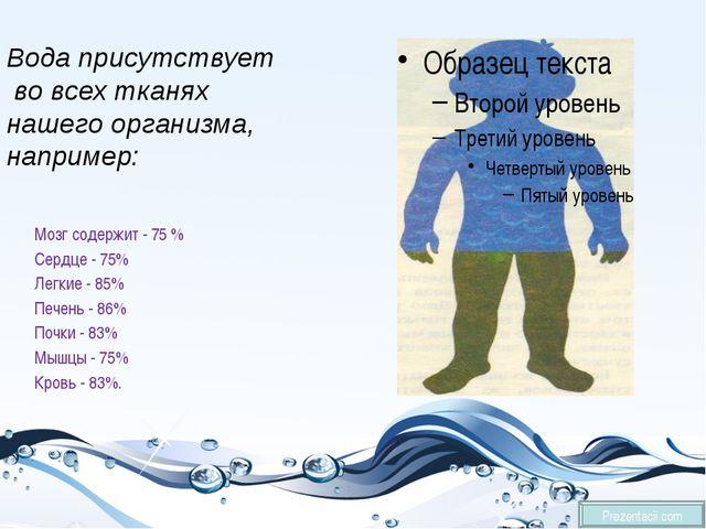 Мозг содержит - 75 % Сердце - 75% Легкие - 85% Печень - 86% Почки - 83% Мышц...