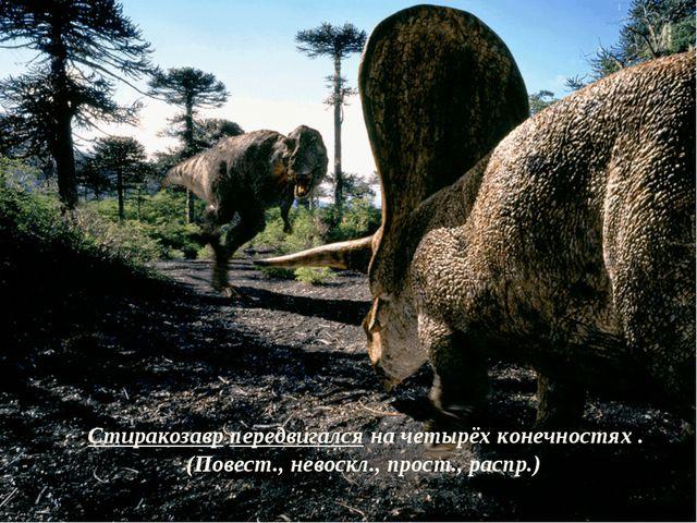 Стиракозавр передвигался на четырёх конечностях . (Повест., невоскл., прост.,...