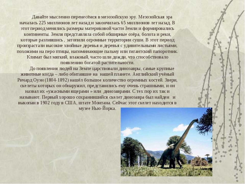 Давайте мысленно перенесёмся в мезозойскую эру. Мезозойская эра началась 225...