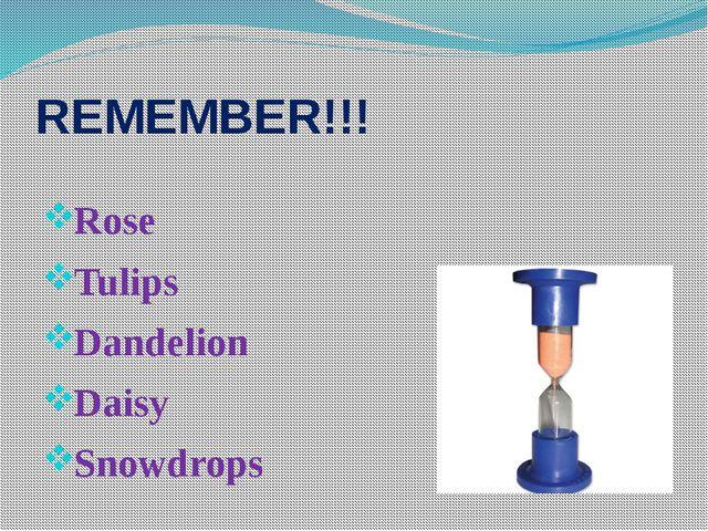 REMEMBER!!! Rose Tulips Dandelion Daisy Snowdrops