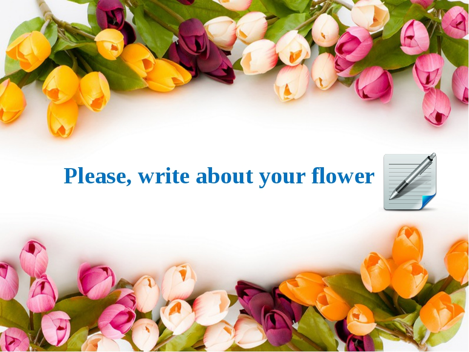 Please, write about your flower