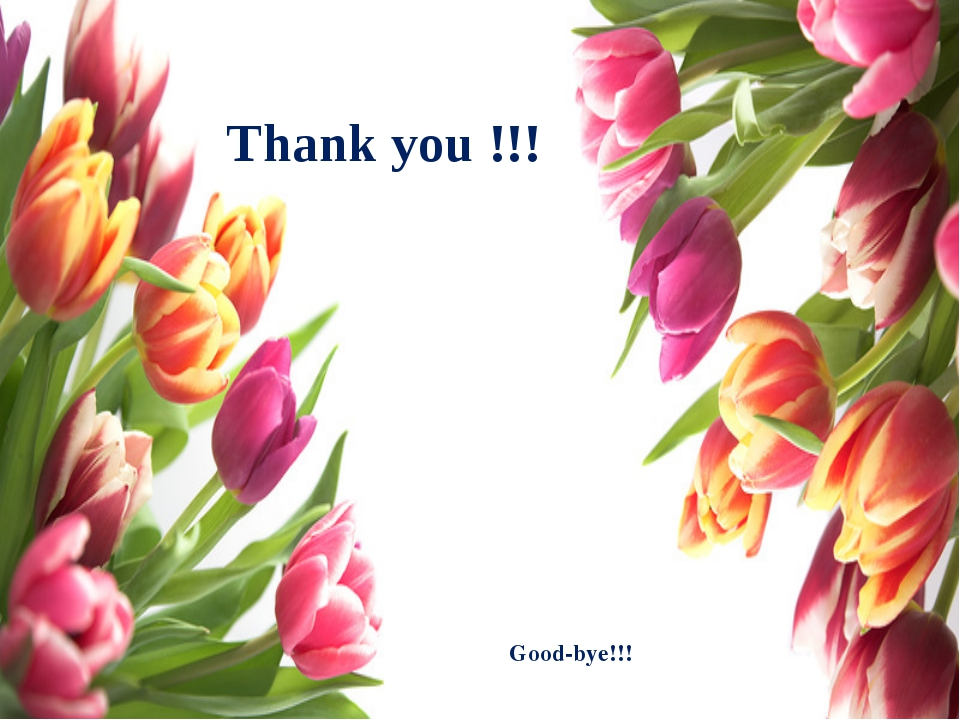 Thank you !!! Good-bye!!!