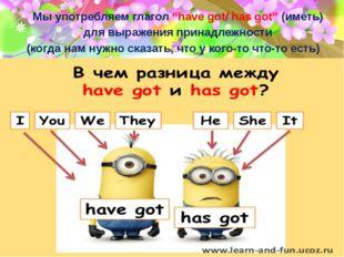 """Мы употребляем глагол """"have got/ has got"""" (иметь) для выражения принадлежност"""