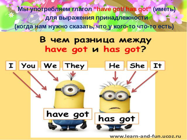 """Мы употребляем глагол """"have got/ has got"""" (иметь) для выражения принадлежност..."""