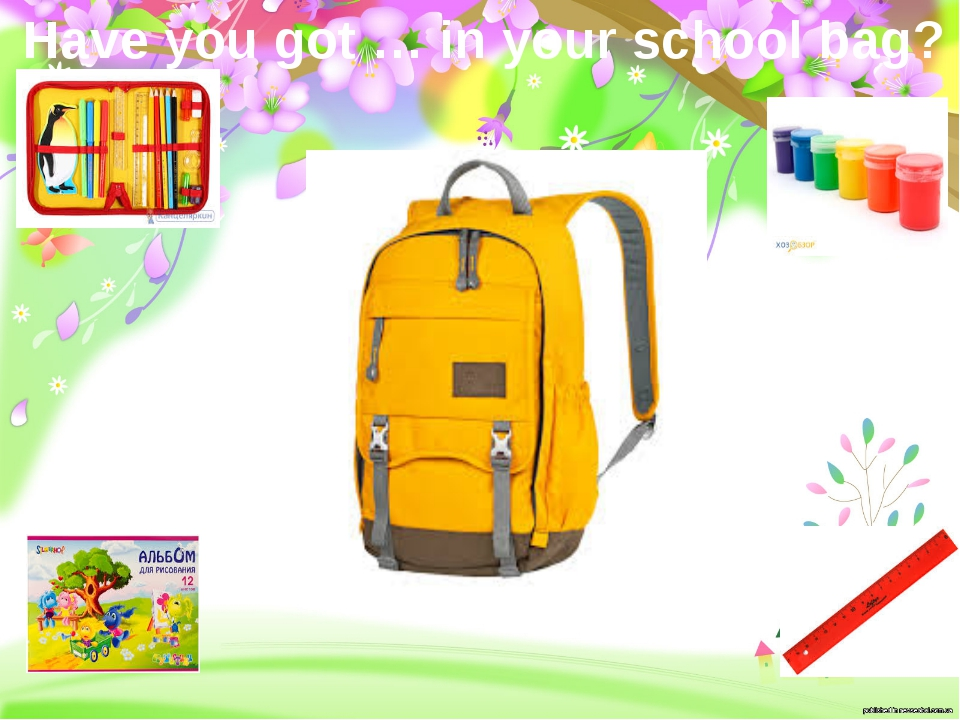 Have you got … in your school bag?