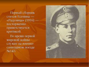 Первый сборник стихов Есенина — «Радуница» (1916) — восторженно приветствует