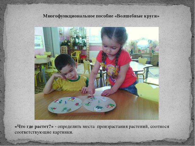 Многофункциональное пособие «Волшебные круги» «Что где растет?» - определить...