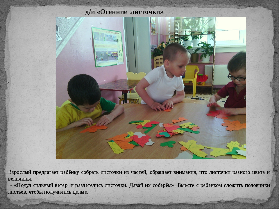 д/и «Осенние листочки» Взрослый предлагает ребёнку собрать листочки из частей...