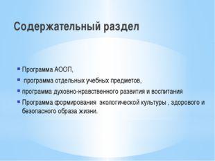 Содержательный раздел Программа АООП, программа отдельных учебных предметов,
