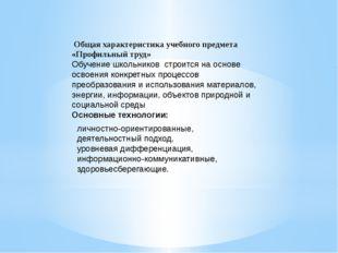 Общая характеристика учебного предмета «Профильный труд» Обучение школьников
