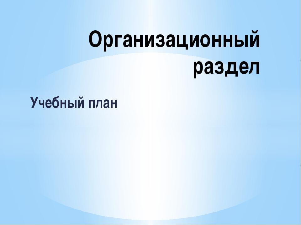 Учебный план Организационный раздел