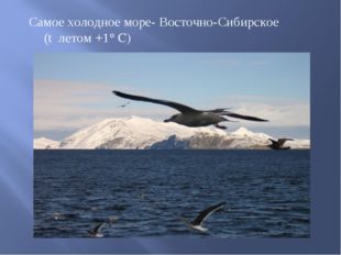 Самое холодное море- Восточно-Сибирское (t летом +1°C)