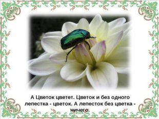 А Цветок цветет. Цветок и без одного лепестка - цветок. А лепесток без цветка
