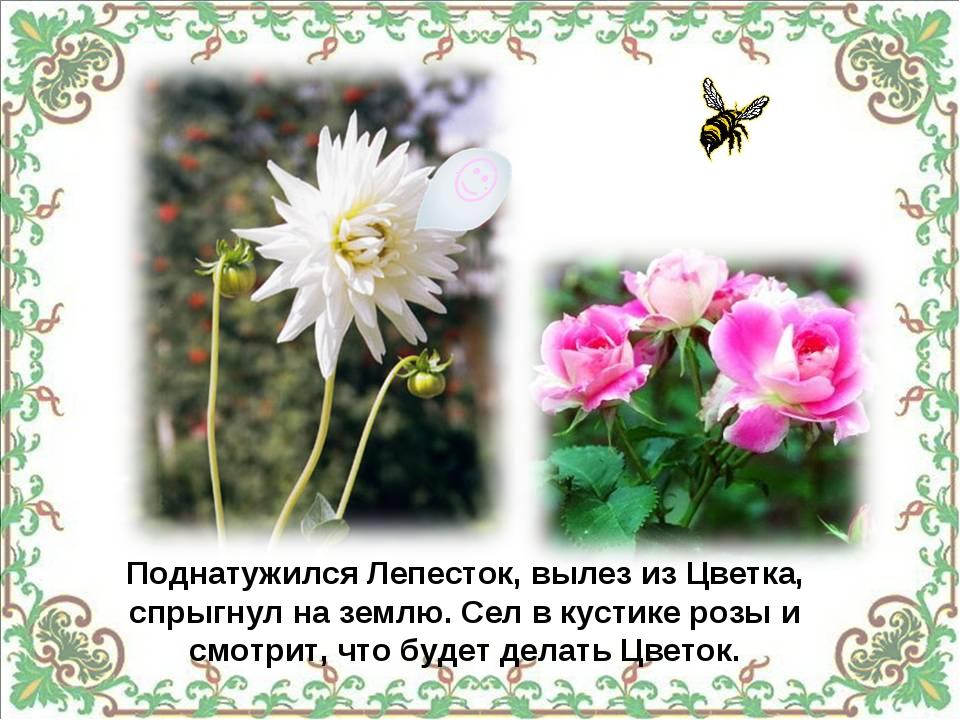Поднатужился Лепесток, вылез из Цветка, спрыгнул на землю. Сел в кустике роз...