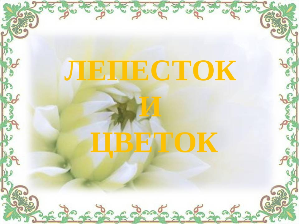 ЛЕПЕСТОК И ЦВЕТОК