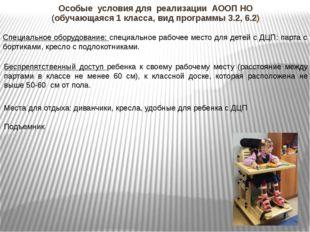 Особые условия для реализации АООП НО (обучающаяся 1 класса, вид программы 3.