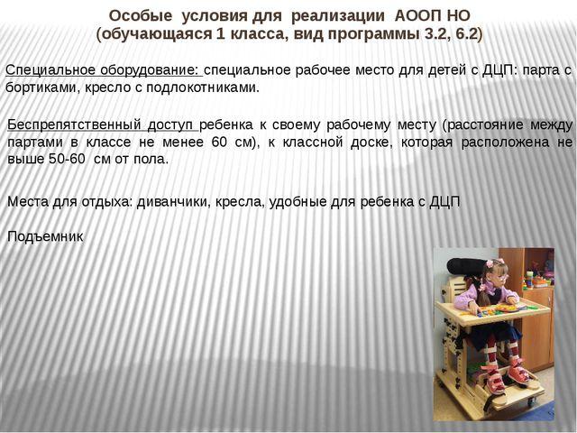 Особые условия для реализации АООП НО (обучающаяся 1 класса, вид программы 3....