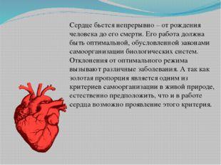 Сердце бьется непрерывно – от рождения человека до его смерти. Его работа дол
