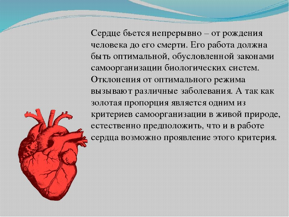 Сердце бьется непрерывно – от рождения человека до его смерти. Его работа дол...