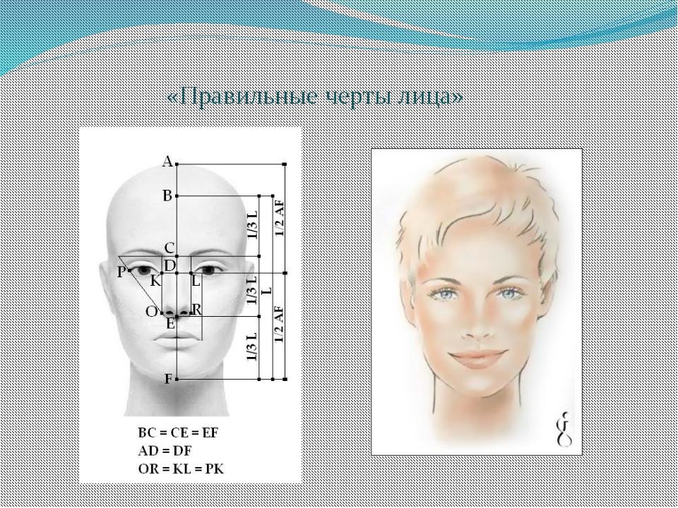 пропорции фотографий калькулятор повязка голову спицами