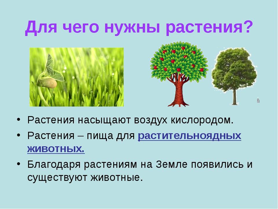 Для чего нужны растения? Растения насыщают воздух кислородом. Растения – пища...