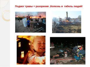Поджог травы = разорение ,болезнь и гибель людей!