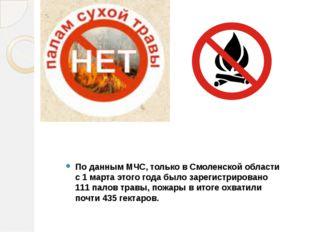 По данным МЧС, только в Смоленской области с 1 марта этого года было зарегис