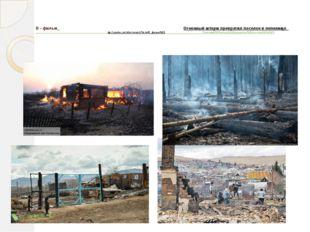 В - фильм_ Огненный шторм превратил поселок в пепелище_ ttp://yandex.ru/video