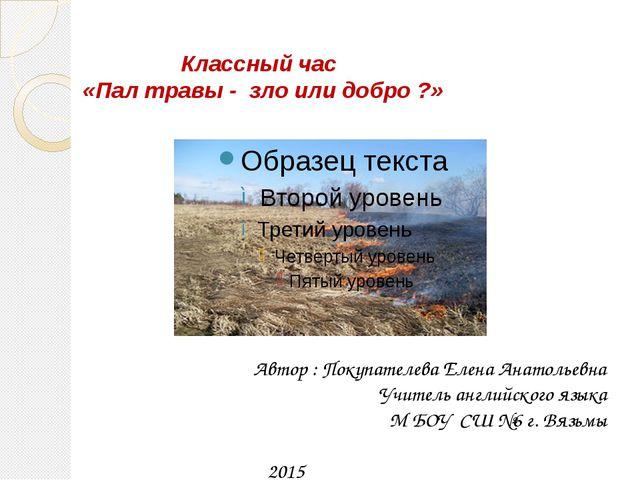 Классный час «Пал травы - зло или добро ?» Автор : Покупателева Елена Анатол...