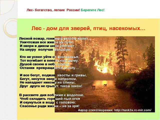 Лес- богатство, легкие России! Берегите Лес!