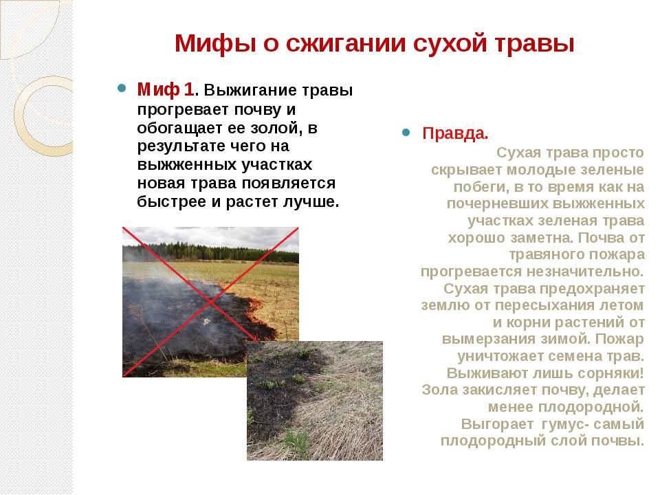 Мифы о сжигании сухой травы Миф 1. Выжигание травы прогревает почву и обогаща...