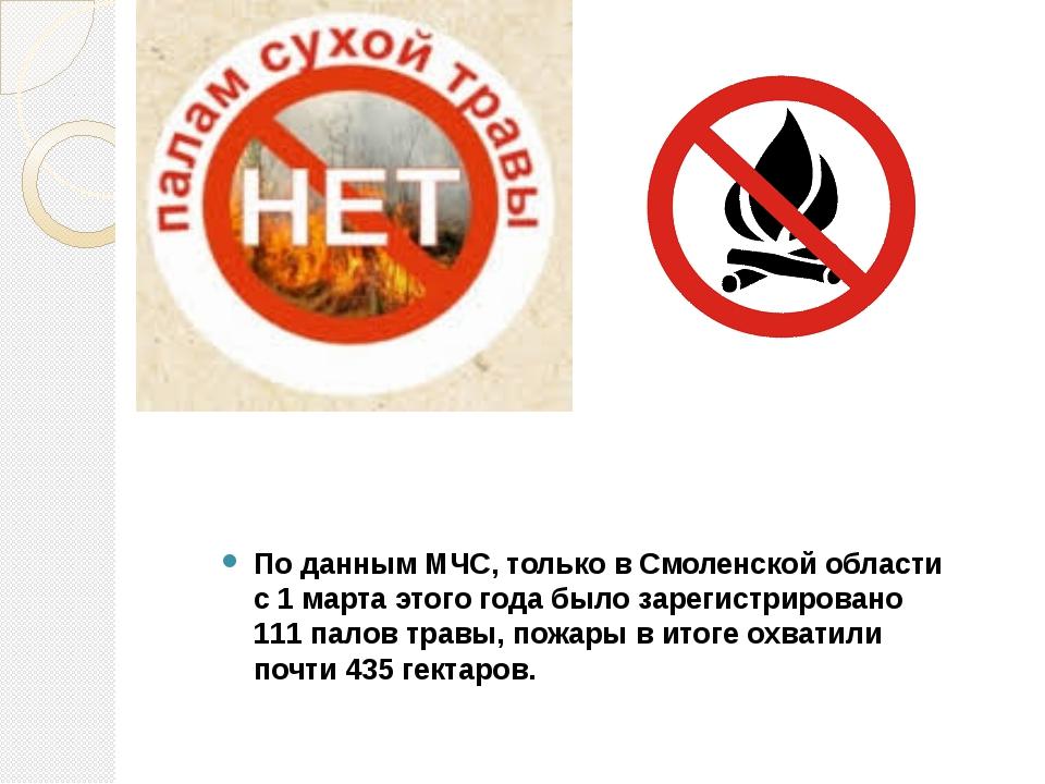 По данным МЧС, только в Смоленской области с 1 марта этого года было зарегис...