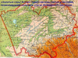 «Золотые горы Алтая» представлены пятью участками, позволившими получить стат