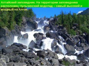 Алтайский заповедник. На территории заповедника расположен Чульчинский водопа