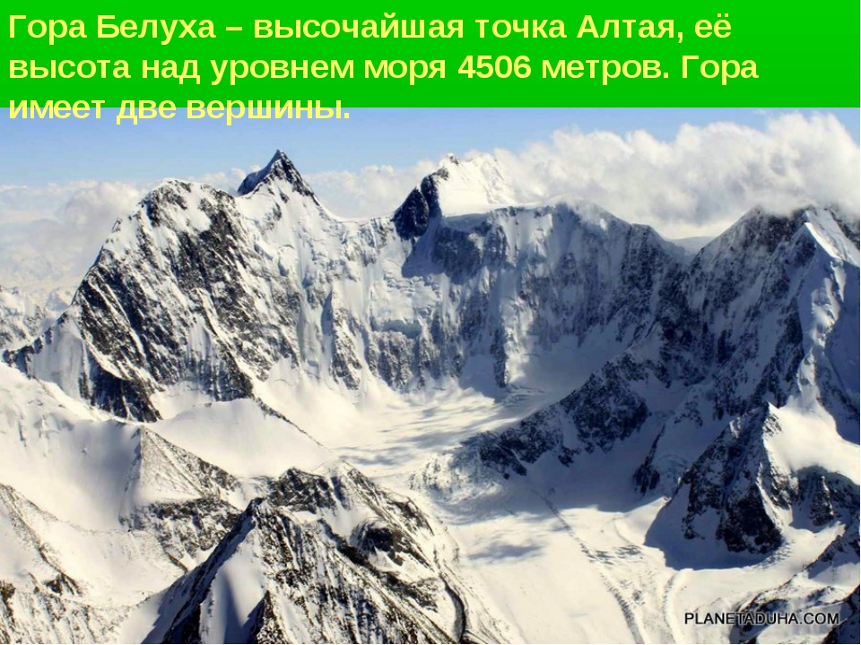 Гора Белуха – высочайшая точка Алтая, её высота над уровнем моря 4506 метров....