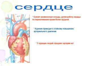 * Сужает кровеносные сосуды, делая работу сердца по перекачиванию крови более