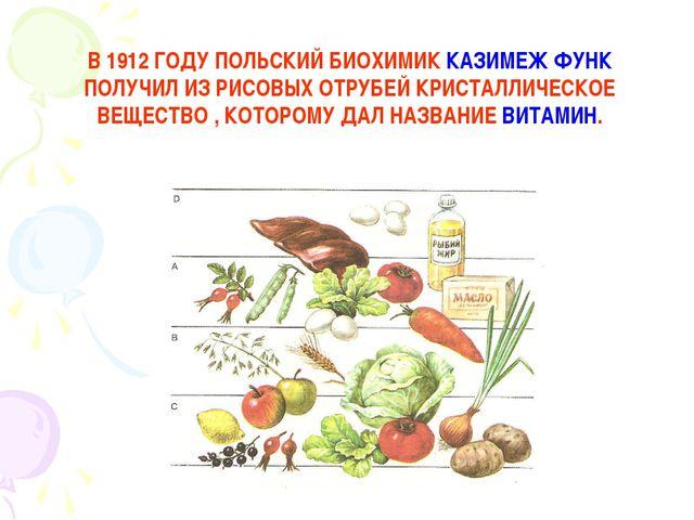 В 1912 ГОДУ ПОЛЬСКИЙ БИОХИМИК КАЗИМЕЖ ФУНК ПОЛУЧИЛ ИЗ РИСОВЫХ ОТРУБЕЙ КРИСТАЛ...