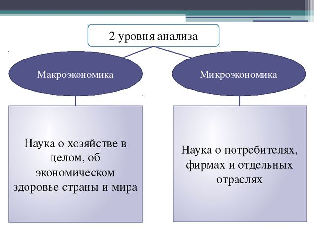2 уровня анализа Макроэкономика Микроэкономика Наука о хозяйстве в целом, об...