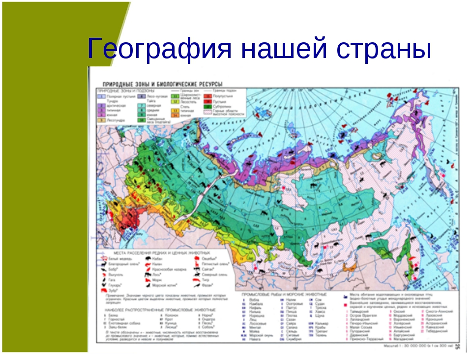 География нашей страны