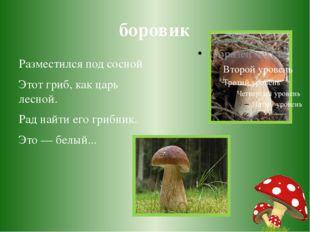боровик Разместился под сосной Этот гриб, как царь лесной. Рад найти его гриб