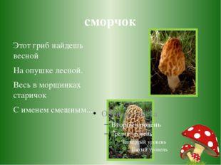 сморчок Этот гриб найдешь весной На опушке лесной. Весь в морщинках старичок