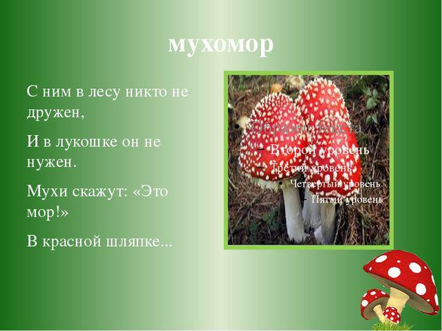 мухомор С ним в лесу никто не дружен, И в лукошке он не нужен. Мухи скажут: «...