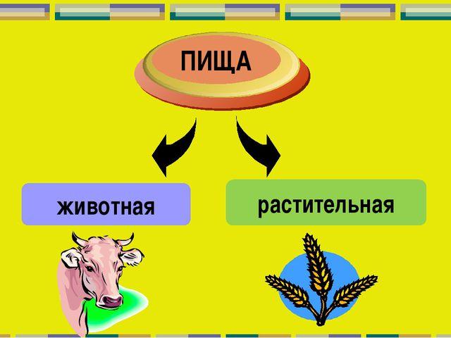 животная растительная ПИЩА